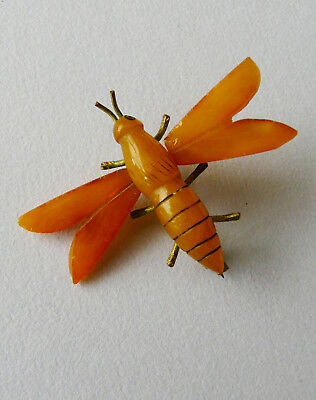 Antique Victorian natural butterscotch carved amber brooch bee wasp- Rare.