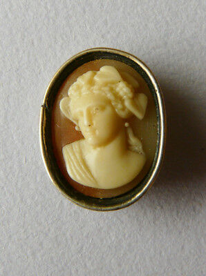 Finely carved Victorian shell cameo- Classical beauty Sterling silver pin mount