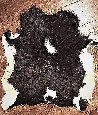 Exotic Cowhide Rug Real Hair-On Fur Leather Natural Cow Skin, Peau vache, 34x35""