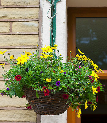 Floating hanging basket stainless steel no rust not chains fits plantopia strong