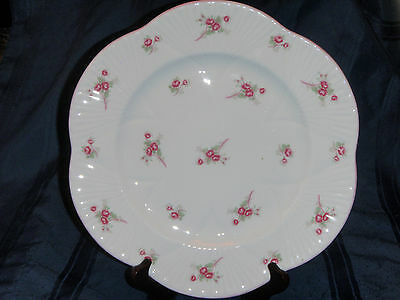 Shelley Rose Spray Large Plate - Dainty Shape