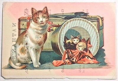 Attractive Victorian Trade Card  Nathan's New York Fine Shoes  6th Ave. NY