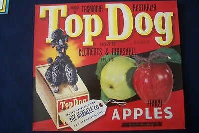 Vintage Original Apple Box Crate Label Tasmania Top Dog Clements Marshall