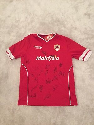 Mens Large Signed Cardiff City Top