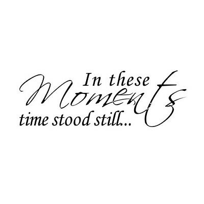 In These Moments Time Stood Still Wall Quote Words Decals PVC Sticker Home W6Y9