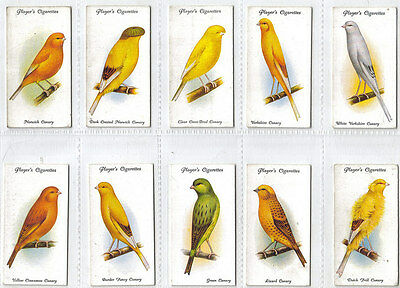 Aviary And Cage Birds John Player 1933 50/50 Full Set With Sleeves