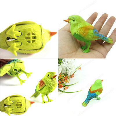 Pretty Funny Sound Voice Control Activate Toy Gift Chirping Singing Bird TB