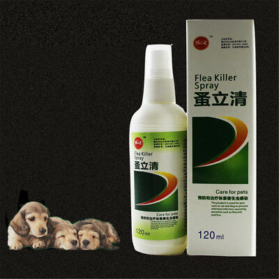 120ml Kitten Pet Insecticide Flea Lice Killer Spray Clear Treatment for Cats Dog