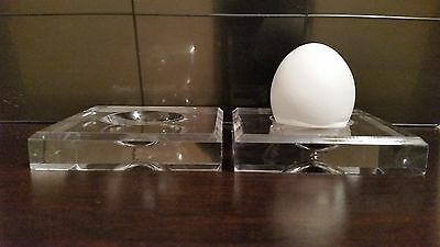 12 Jumbo Square Dimple Display Stand Dove Quail Pigeon Ostrich Emu Egg