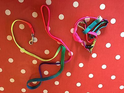 Colourful Small Pet Harnesses Adjustable Would Suit Small Cats, Ferrets, Rabbits