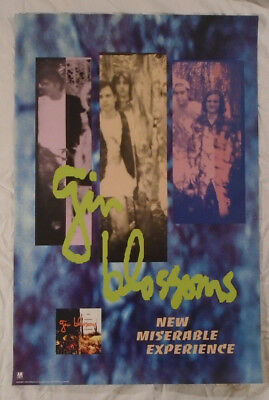 Gin Blossoms 1992 Promo Poster New Miserable Experience A&M Records