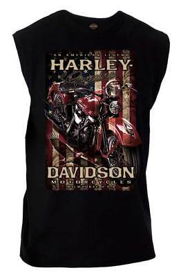 Harley-Davidson Men's Distressed Vintage Pride Sleeveless Muscle Tee, Black