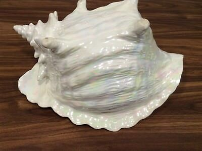 "Large 12"" Vintage ""Mother Of Pearl"" Conch Shell Plant Planter"