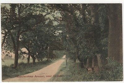 Printed Photo Postcard Of Humberstone Avenue, Grimsby, Lincolnshire Posted 1905