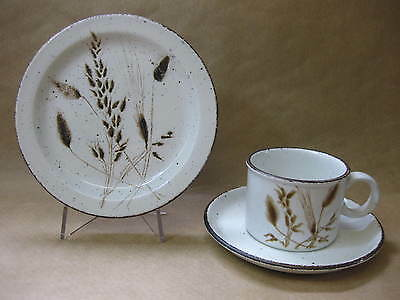 Vintage Midwinter Stonehenge Wild Oats Cup, Saucer & Plate ~ Trio