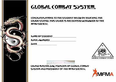 Global Combat System Certified 1St Dan Dvd Course.