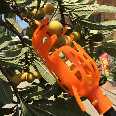 Plastic Fruit Picker without Pole Fruit Catcher Gardening Picking Tool G*