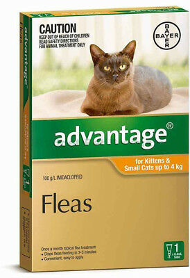 Advantage For Cats for Kittens and Cats up to 4Kg 1 Pack Single Dose Orange