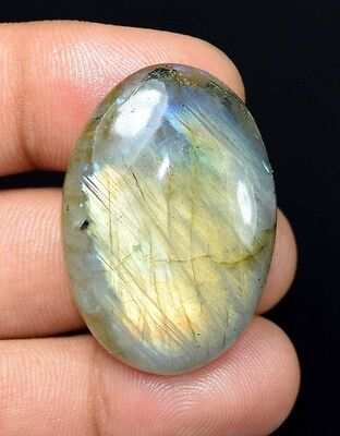 52.10 Cts. 100 % Natural  Yellow Fire Labradorite Oval Cabochon Loose Gemstones
