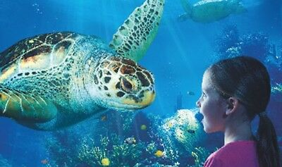 X2 Any Sea Life Tickets-Unique Booking Code - Book Between 9/10/17-18/03/18