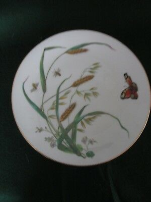 1870s Antique MINTONS Porcelain Botanical Moths and Butterfly Plate
