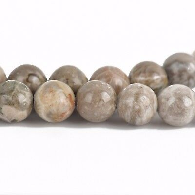 8mm Round TAN FOSSIL STONE Beads, smooth, full strand, Natural Gemstones gaf0012