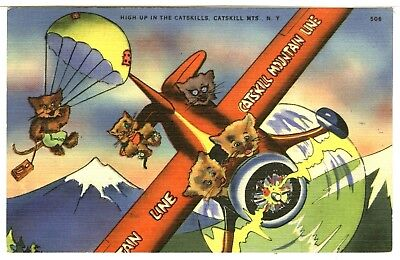 """""""Catskill Mountain Line"""", Kittens in an Airplane, High Up in Catskill Mts, NY"""