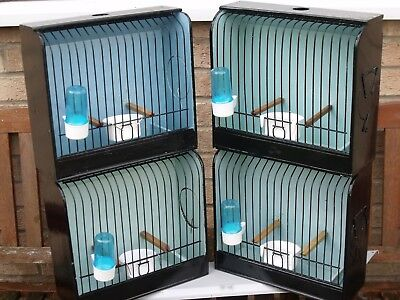 New Colour Canary Bird  Show  Cages