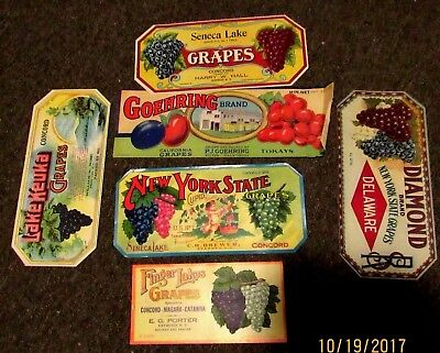 Lot of 6 Labels for GRAPES boxed from N.Y.  and Ca.