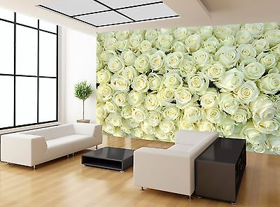 Cream White Colour Roses Flowers Photo Wallpaper Wall Mural GIANT WALL DECOR