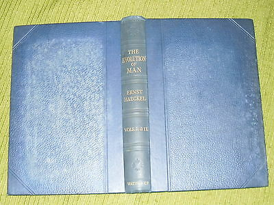 Antiquarian/Collectable/Books.  The Evolution Of Man. 1906.  Used.