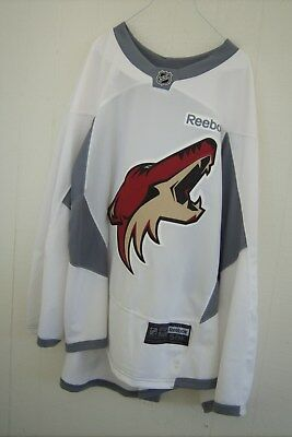 ARIZONA COYOTES white RBK size 58K goalie-cut practice jersey (Louie Domingue)