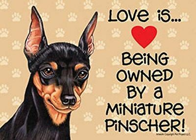 "Love is… being owned by a Miniature Pinscher 5"" x 7"" Plastic Dog Sign"