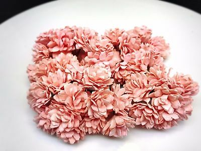 50 pcs. peach pink gypsophila flowers mulberry paper for Crafts 20 mm. #123