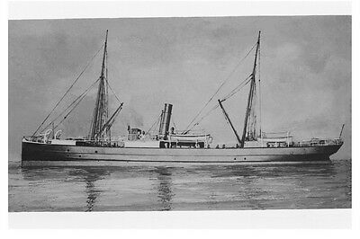 FERRET - Adelaide Steam Ship Co, Australia Modern Digital Photo Postcard