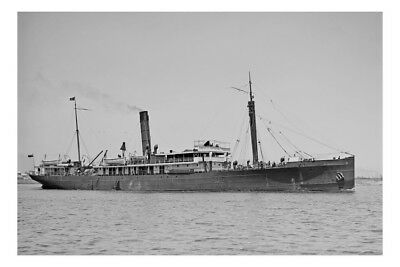 MOURA - Union SS Co of New Zealand at Melbourne Postcard Modern Digital