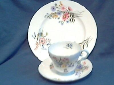 "Vintage Shelley "" Wild Flowers "" Coffee Trio  - 1st Quality - England -- 13668"