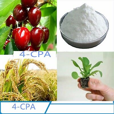 4-cpa 4-Chlorophenoxyacetic acid 98% 10g AUXIN type plant hormone  Free shipping