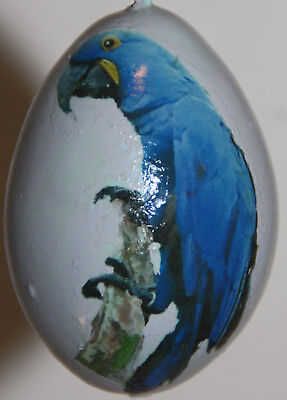 gourd ornament with parrot