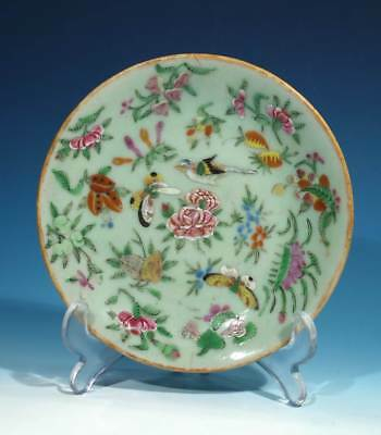 Antique Chinese Handpainted Canton Plate.
