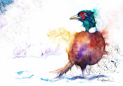 Original Watercolour Pheasant Painting by Artist Be Coventry Wildlife Art