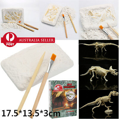 Dinosaur Excavation Kit Archaeology Dig Up History Skeleton Fun Kids Toy Gifts