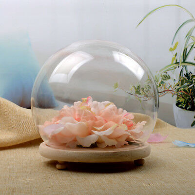 Small Glass Tabletop Vintage Flower Display Dome Cloche Bell Jar w/ Wooden Base