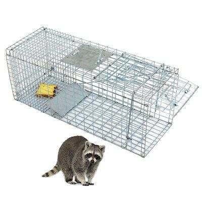 """Animal Trap Steel Cage for Small Live Rodent Rat Squirrel Raccoon Iron 32"""" x 12"""""""