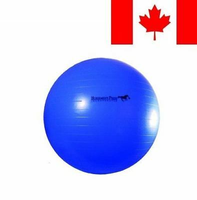 Horsemen's Pride Mega Ball for Horses, 30-Inch