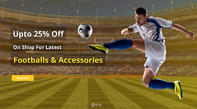 Established Sports eCommerce STORE 200% Profitiable Website Business - Dropship