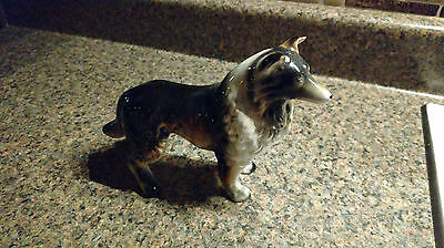 C Wales Collie Dog Puppy Figurine Made In Japan Vintage Animal Porcelain Gloss