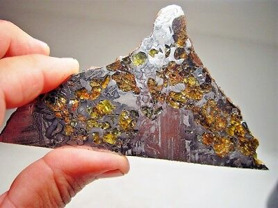 Great Deal! Amazing Crystals! Sensational Seymchan Pallasite Meteorite 106.4 Gms