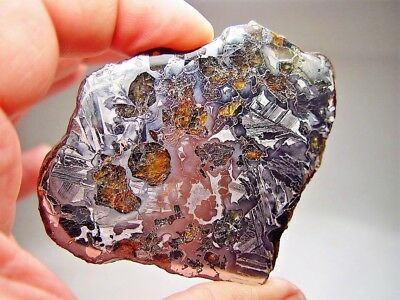 Great Deal! Amazing Crystals! Sensational Seymchan Pallasite Meteorite 59.8 Gms