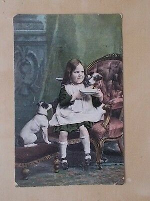 Vintage 1908 Postcard - Young Girl With Jack Russell Terriers